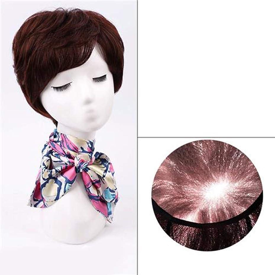 ほめる連帯運河BOBIDYEE 女性のファッションかつらのための前髪付き天然毛エクステンション短く本物の髪のかつら (色 : Dark brown)