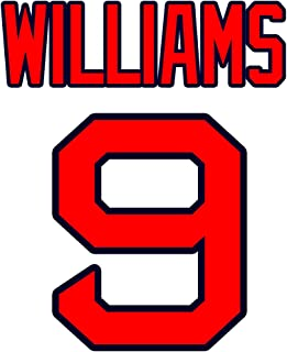 ted williams jersey number