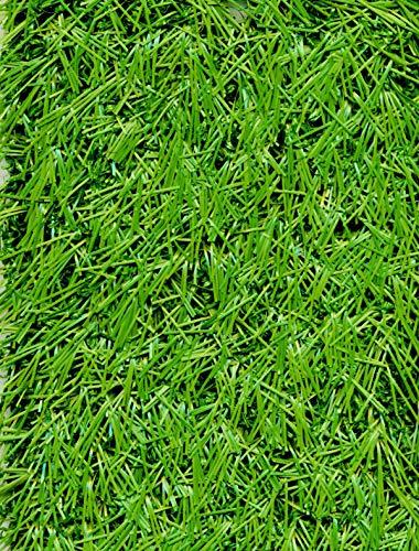 PEGANE Rouleau Gazon Artificiel d'extérieur en 100% polypropylène Coloris Vert - Dim : 2m x 25m