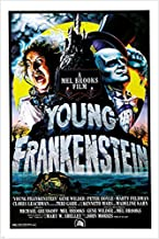 HSE Gene Wilder Madeline KAHN Young Frankenstein 1974 Movie Poster 24X36 Campy (Reproduction, not an Original)