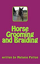 Horse Grooming and Braiding
