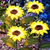 ANGMLN 4 Pack Solar Flowers Lights Garden Stake Outdoor Sunflower for Garden, Courtyard, Patio, Front Yard, Backyard, Balcony, Entryway Party Wedding Holiday Outdoor Waterproof Decoration #3