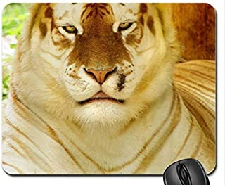 Mouse mat Gaming Mouse pad Golden Tiger Mouse Pad, Mousepad
