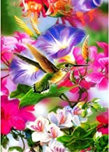 MXJSUA 5D Diamond Painting Full Round Drill Kits for Adults Pasted Embroidery Cross Stitch Arts Craft for Home Wall Decor Hummingbird 12x16in