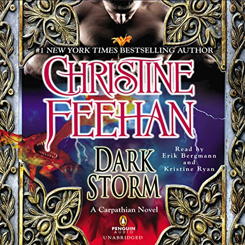 Dark Storm audiobook cover art