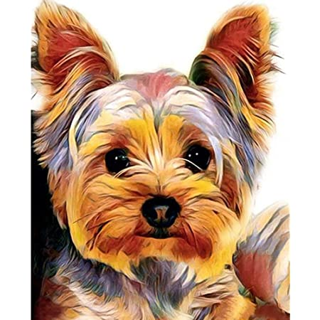 DIY 5D Diamond Painting by Number Kit Full Round Drill Round Rhinestone Embroidery Pictures for Decoration Yorkie Colors Dog 11.8x11.8in 1 Pack By Tangbr