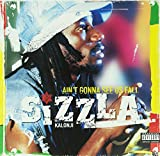 Ain'T Gonna See Us Fall [Vinyl LP] - Sizzla