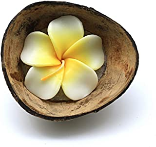 Hawaii Luau Party Real Coconut Half Shell Candle Holder Floral Plumeira Scented Candle in White