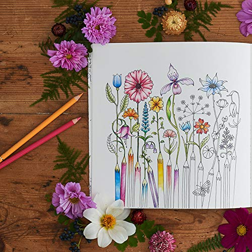 615Rrac5TGL. SL500  - World of Flowers: A Coloring Book and Floral Adventure