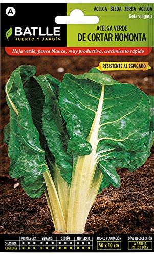Batlle Gemüsesamen - Grüner Schnitt-Mangold Nomonta (600 Samen)