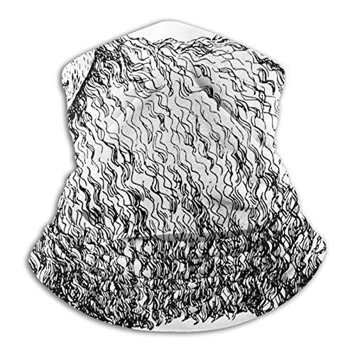 YBEAYQYXR Boceto de oveja alpaca con plumas onduladas abrigo de microfibra unisex calentador de cuello protector solar resistente al viento pasamontañas diadema bufanda para exteriores