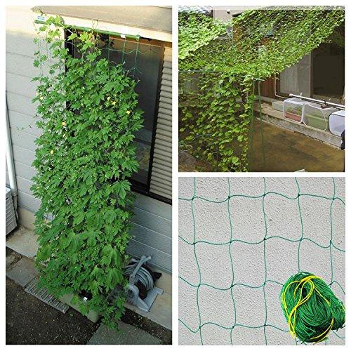 GreeGardening Durable Soporte para Plantas de Enrejado de Malla de Red de Nailon para Plantas trepadoras, Verde, 5.9Ft x 11.8Ft(1.8x3.6...