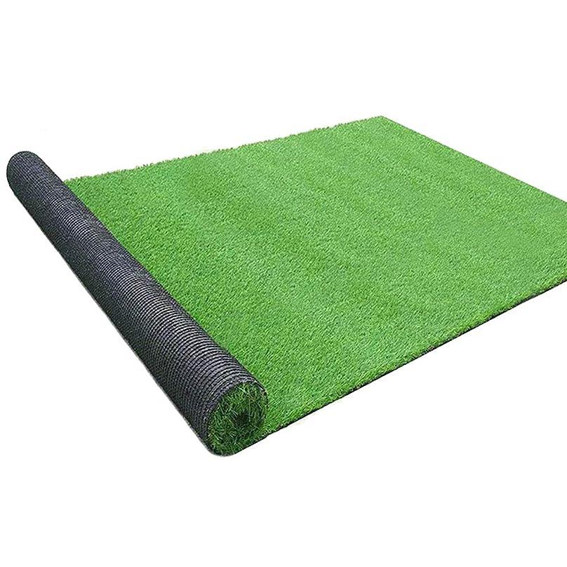 格納ラッチ補正AQAWAS 屋内および屋外の人工芝、非毒性の屋外ストローマット、現実的、マルチサイズ、1.5cmの芝生ドッグマット、庭のバルコニーの屋内/屋外の装飾用,Emerald_2x3m/6x9ft