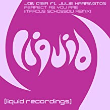 Perfect As You Are (feat. Julie Harrington) [Marcus Schossow Remix]