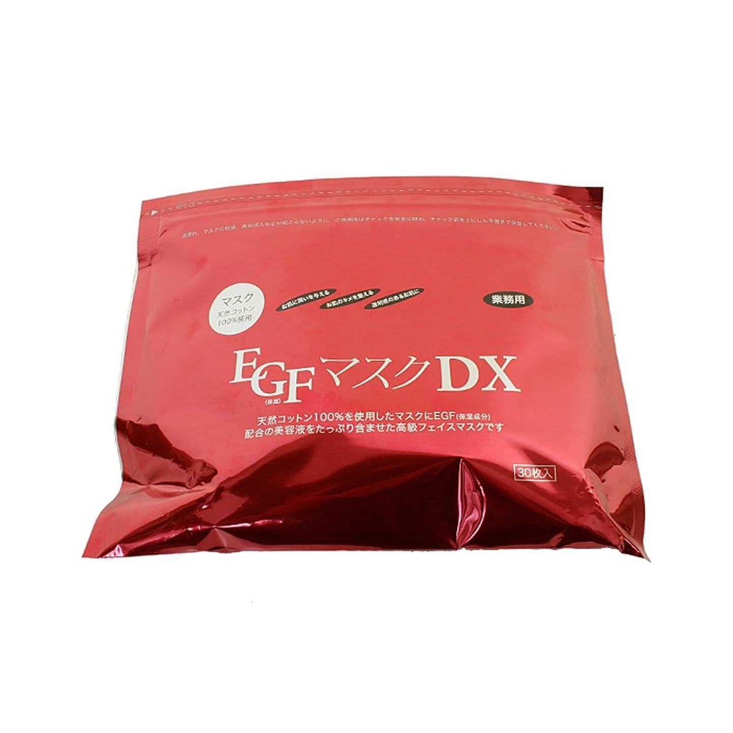 関係ない土器ワーディアンケースEGFマスクDX 30枚×4袋