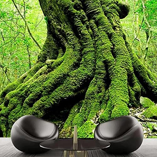 Papel Tapiz Fotográfico 3D Europeo Bosque Verde Árboles Naturaleza Paisaje Dormitorio Sala De Estar Sofá Telón De Fondo Murales Fondo De Arte De Pared Wallpaper 300X210Cm