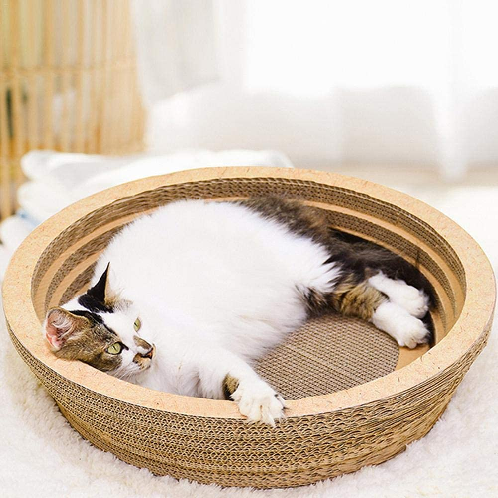 Funihut - Gato rascador para Gatos y Camas, Cuenco Redondo, cómodo, Buena Salud, Juguete antiarañazos de cartón Ondulado para rascar y Descansar, con Caja: Amazon.es: Productos para mascotas