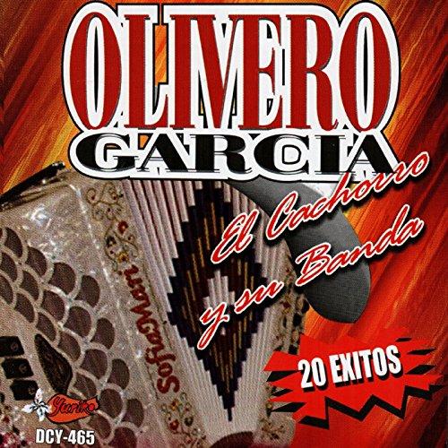 Ba30DEllylelly Concierto Musical Ritmo Director de Banda Director Baton 38.5cm Instrumento Musical