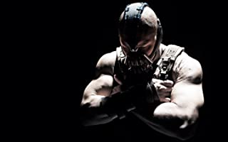 The Dark Knight Rises 11x17 HD Photo Poster #05