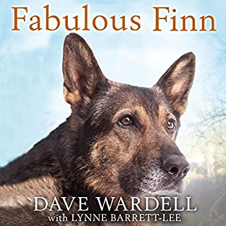 Fabulous Finn cover art
