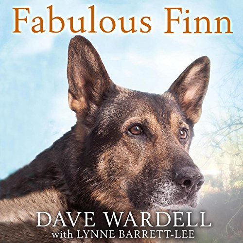 Fabulous Finn audiobook cover art