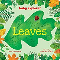 Leaves (Baby Explorer)