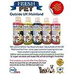 Trade Chemicals Fresh Pet Kennel/Cattery Cleaner & Disinfectant - Kills 99.99% Bacteria - Eliminates Odour (Lemon Fresh) 12