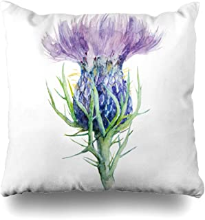 scottish thistle cushions