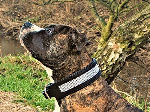 Leder Halsband Hundehalsband Glitzer Lederhalsband Sally Schwarz Leder Breit ! Tysons Art Strass (L)