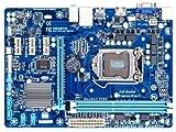 Gigabyte VGA Graphics Cards (GA-H61M-DS2H)
