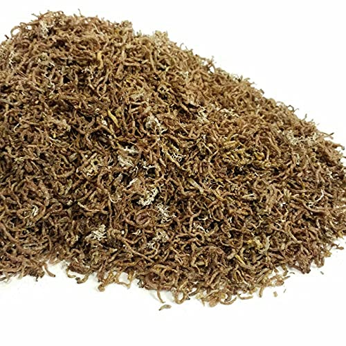 Bloodworms, Grade A Freeze Dried Bloodworms with 5% Loose Tubifex Worms...1/2-lb