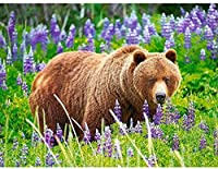 大人のためのジグソーパズル1000ピース-クマの花の動物-キッズパズルおもちゃ教育パズルジグソー