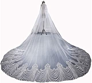 Bridal Veil Applique Edge Cathedral Bride Veil Custom Made Lace Bridal Veils Long Party Wedding Accessories 3 Meter Withou...