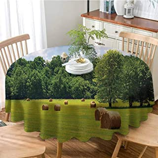 Farmhouse Decor Collection Washable Dust-Proof Table Cover Farmland after Harvest Peaceful Terrain Remote Rural Country Plantation Seasonal Image Table for Holiday & Thanksgiving 51 Inch Round Green