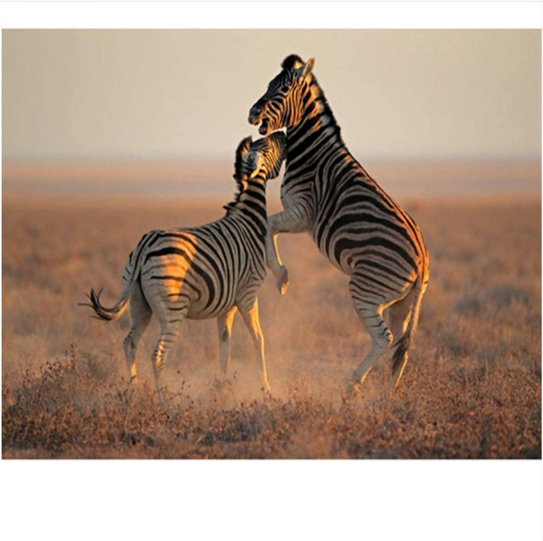 Malen Nach Zahlen Geschenk Für Erwachsenes Kind Spielerisch Zebra DIY Für Anfänger Junior Malerei Auf Leinwand-Rahmen 40X50Cm B07PH8YPQR | Economy