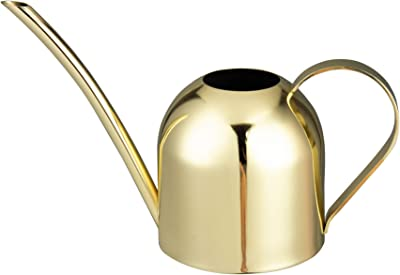 IMEEA 15oz/450ml Mini Watering Can Indoor for Kids House Desk Office Plants Bonsai Stainless Steel (Gold)