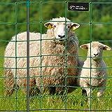 Filet électrifiable de clôture pour moutons, chèvres VOSS.farming farmNET, 50 m,...