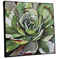 Small Square Green Succulent Watercolor Painting On Canvas Agave Cactus Wall Art Prints from Artist, 8x8, Ready To Hang