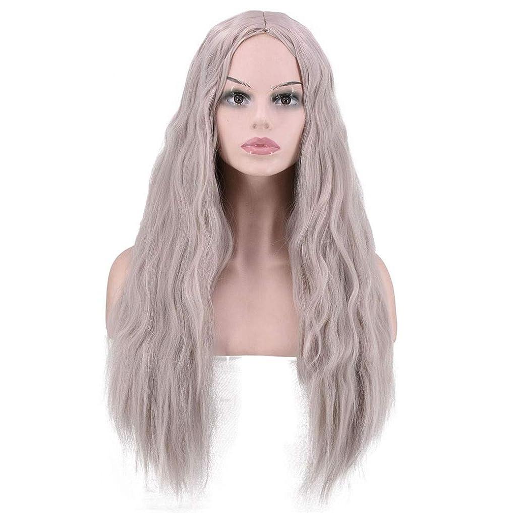 誤解する改革固執YESONEEP 灰色のトウモロコシの長い巻き毛の女性の毎日のコスプレドレスのためのかつらかつらロールプレイングウィッグ (色 : グレー)
