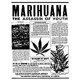 Advertising Drug Awareness Warning Marijuana Weed Cannabis