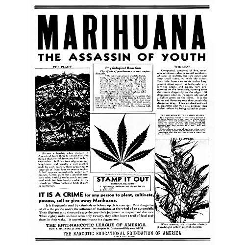 Advertising Drug Awareness Warning Marijuana Weed Cannabis Panic USA Art Print Poster Wall Decor 12X16 Inch