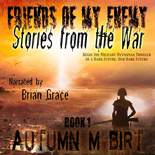 Stories from the War audiobook cover art
