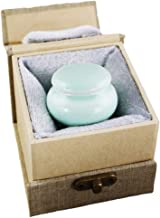 MEILINXU Mini Funeral Keepsake Urns for Ashes - Ceramics Cremation Urns Human Ashes Adult - Fits a Small Amount Cremated Remains - Display Burial Urn at Home Office (Sky Blue Crack Design Baby Urn