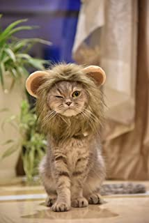 MEWTOGO Lion Mane Wig Funny Cat Kitty Little Puppy Costume - Adorable Pet Hat