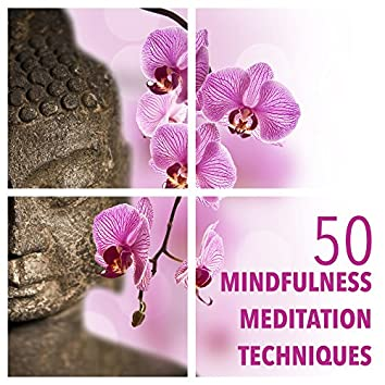 50 Mindfulness Meditation Techniques with Meditation Relax Music Instrumental Collection