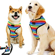 Dog No-Pull Harness Vest & Leash Set with Poopbags Pouch,Rainbow Adjustable Double-Layer Mesh Pet Clothes for Puppy Teddy Shar Pei Small Medium Dogs,Breathable Padded Handle,Daily Walking Travelling