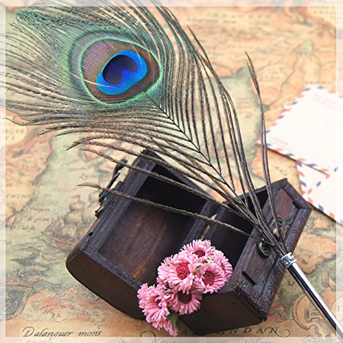 MFC ONLINE Vintage Peacock Feather Ballpoint Pen Refined Queling Pen Quill Pen Ballpoint Pen (1Single Eye Peacock Feather Ballpoint Pen +1 Rectangle- shaped Acrylic Pen Stand)
