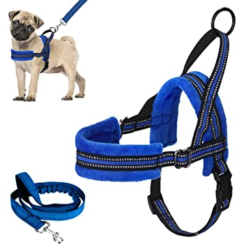 Lukovee Walking Dog Harness and Leash, Heavy Duty Adjustable Puppy Harness Soft Padded Reflective Vest Harness Anti-Twist 4FT Pet Lead Quick Fit Lightweight for Small Dog Cat