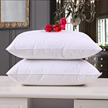 IVAZA New White Filler Cushion (2, 12X12 Inch)