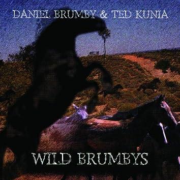 Wild Brumbys